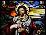 Of Shepherds andSheep